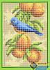 Схема для вышивки бисером - Птичка на яблоне, Арт. ДБп5-076