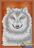 Схема для вышивки бисером - Серый волк, Арт. ДБч5-084
