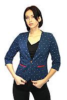 Пиджак женский темно-синего цвета в мелкий горошек /  jacket pj1, фото 1