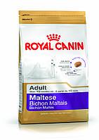 Royal Canin Maltese Adult - корм для собак породы мальтийская болонка с 10 месяцев 0,5 кг