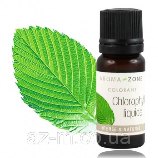Растительный краситель зеленый жидкий Хлорофилл (Chlorophyll)