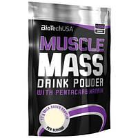 BioTech Гейнер BioTech Muscle Mass, 1000 г (клубника)