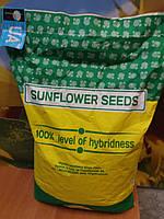 Семена под Гранстар ТОЛЕДО, Подсолнечник устойчив к шести расам заразихи. Высокоурожайный гибрид