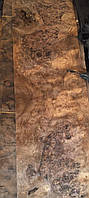 Шпон корня ореха американского ( сорт АВ)