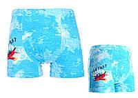 Боксерки для мальчиков TM DONI р.2/3 года (98-104 см) голубой, серый