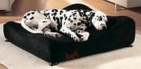 Чехол на ортопедический диван для собак Sofa (Савик)  Savic (50 х 50 см Средний)