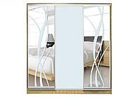 Шкаф купе Матролюкс на 3 двери + фасады из матовых зеркал + рисунки пескоструй на 3 двери