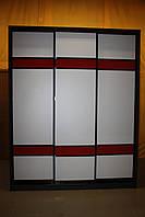 Шкаф-купе под заказ Z - 57, фото 1