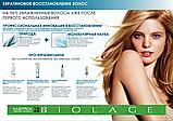 Matrix Biolage Ампулы для кератинового восстановления волос Keratindose,10х10 мл, фото 3