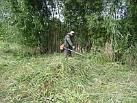 Косить траву Покосить траву в Киеве Выкосить траву и бурьян
