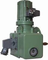 Исполнительный механизм МЭМ 100/63-0,25 Р-85