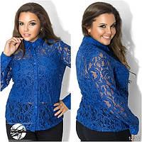 Женская нарядная гипюровая блуза синего цвета с длинным рукавом. Модель 12370. Батальные размеры.