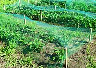 Сетка от птиц (4м*10м) защитная на деревья, кустарники, виноградники