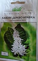 Семена цветов сорт Кофейное дерево Арабика