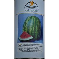 Семена арбуза АУ-Продюсер/Lark Seeds(500г)- усовершенствованный сорт известного сорта Кримсон Свит