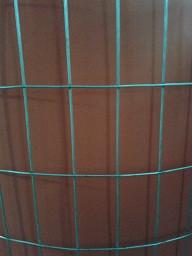 Сетка сварная оцинкованная, Ячейка 25х50 мм. Диаметр 1,6 мм.