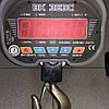 Весы крановые ЗЕВС с радиоканалом (3000 кг), фото 2