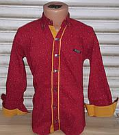 Стильная стрейчевая рубашка для мальчика 6-14 лет (бордо с планкой) (пр. Турция)