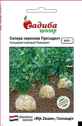 Семена сельдерея Президент (Rijk Zwaan / САДЫБА ЦЕНТР) 0,03 г — среднеранний сорт (130 дней), корневой, фото 2