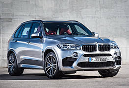 Диски и шины на BMW X5 F85