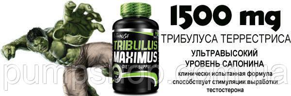 Трибулус BioTech USA Tribulus Maximus -90 таб., фото 2