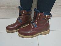 Женские ботинки зима, эко кожа, бордовые / ботинки тимберленды женские, каблук 3.5 см,  модные