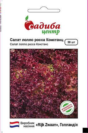 Семена салата Констанс (Rijk Zwaan / САДЫБА ЦЕНТР) 30 шт — бордовый, тип Лолло Росса, фото 2