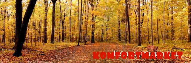 """Фотообои: """"Осенний пейзаж"""""""