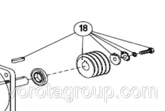 Червяк (комплект) AN-MOTORS ASW.4018