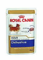 Royal Canin Chihuahua Adult Wet - влажный корм для собак породы чихуахуа с 8 месяцев 0,085 кг