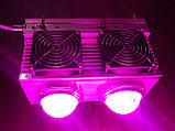 Фитолампа GrowStar 300W. Grow LED Lamp 300W (2X150W) 7 Band Spectrum., фото 4