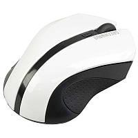 Мышь GreenWave Fiumicino, Black-White USB, wireless