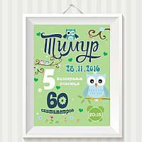 Метрика, плакат, постер Совушка