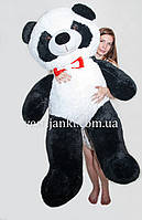 Мягкая игрушка панда 165 см