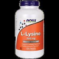 Лизин, 500 мг, 250 капсул, L-Lysine, Now Foods
