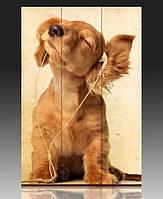 Ширма Веселый щенок