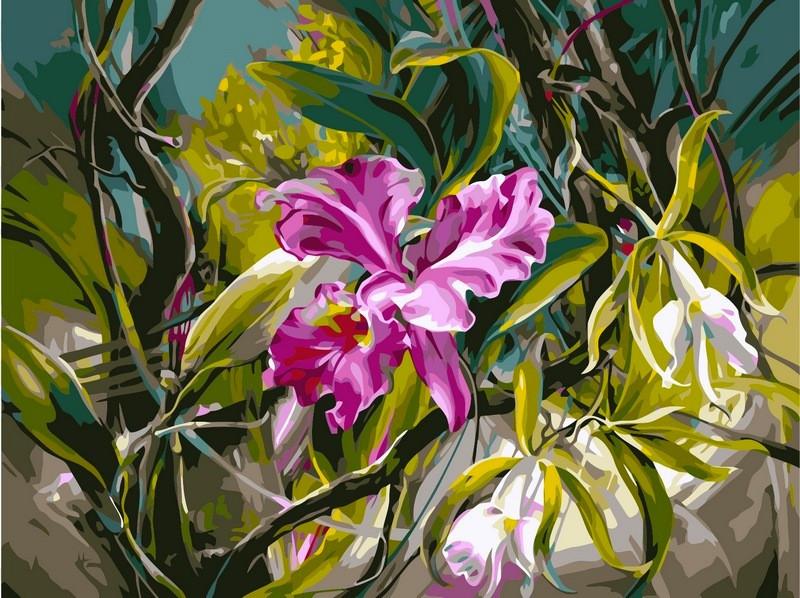 Раскраски для взрослых 40×50 см. Прекрасные орхидеи Художник Ви Данн-Харр
