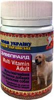 Мультивитамины для взрослых собак Дивопрайд, 100 тб