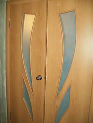Двери двойные двухстворчатые 2