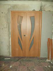Двери двойные двухстворчатые 3