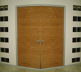 Двери двойные двухстворчатые 9