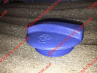 Крышка расширительного бачка Chery Amulet Чери Амулет, фото 1