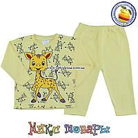 Костюм пижамка для малыша Размеры: от 6 до 9 месяцев (4950-3)