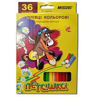 Карандаши  36 цветов шестигранные , Пегашка, Marco