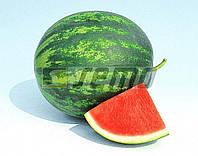 Семена арбуза Гранат F1 10 грамм Semo