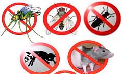 Средства от медведки,муравьев,мух, крыс мышей грызунов тараканов,моли,клопов