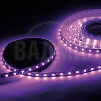 Светодиодная RGB лента, SMD5050, цвет RGB, 60 св./м, 14.4 Вт/м, без влагозащиты, M-TEK