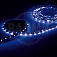 Гибкая светодиодная лента, SMD2835, цвет синий, 60 св./м, 4.8 Вт/м, без влагозащиты, M-TEK
