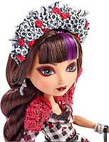 Оригинальная кукла Mattel Сериз Худ из серии Эвер Афтер Хай Несдержанная Весна, Ever After High Cerise Hood