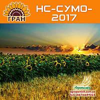 Семена подсолнечника НС-СУМО-2017 (110 – 112 дн.)